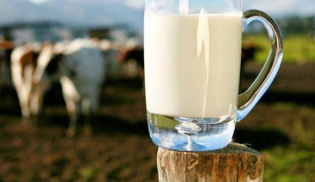 «Γνωρίστε την διατροφική αξία κάποιων εναλλακτικών μορφών γάλακτος», από την  Κατερίνα Κουρουπάκη , Επιστημονική συνεργάτη neadiatrofis.gr!