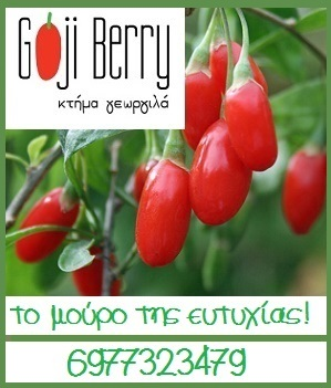 GOJI BERRY GEORGILA