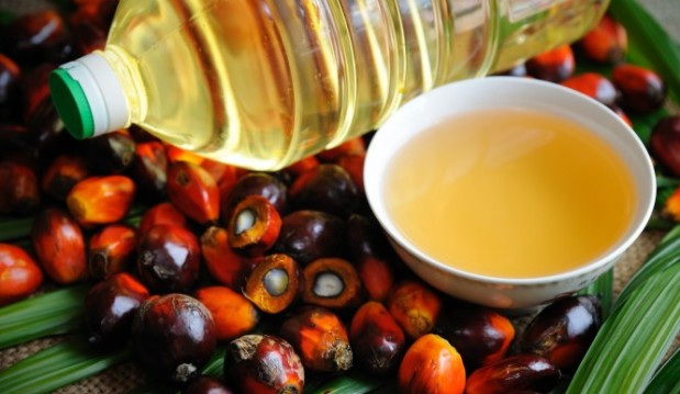 «Ποια καθημερινά προϊόντα περιέχουν φοινικέλαιο – Δεν είναι μόνο η Nutella…», από τον Μιχάλη  Θερμόπουλο και το iatropedia.gr!