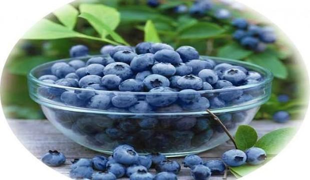 Γιατροσόφια με μύρτιλλα για το διαβήτη, από το «Η τροφή μας το φάρμακό μας»!