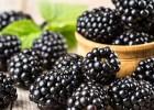 Τέλεια και γρήγορα σνακ για διαβητικούς, από τον Θοδωρή Διάκο και το iatronet.gr!